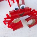 Crabby Scout Craft Project