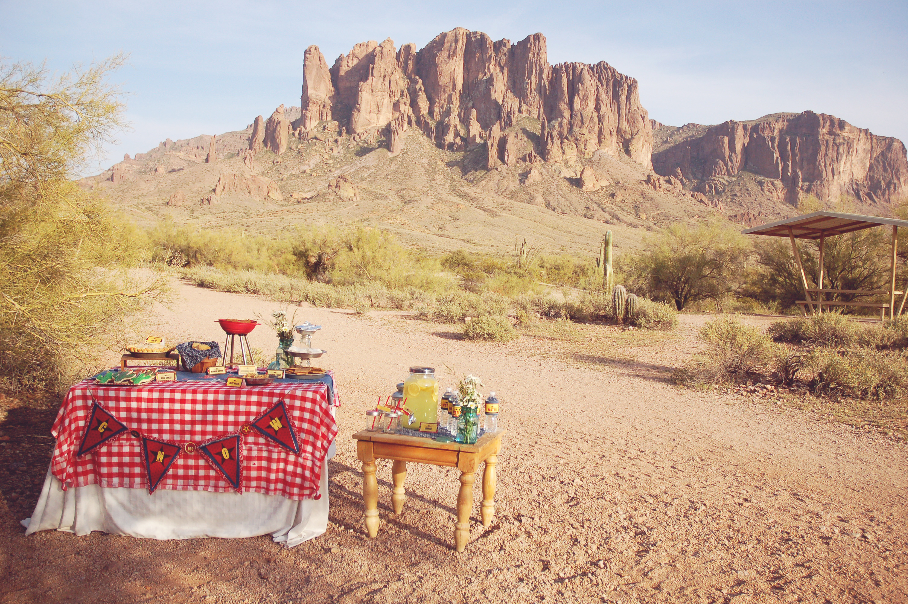 Gold Rush Barbecue – A Rustic BBQ Party with Style!