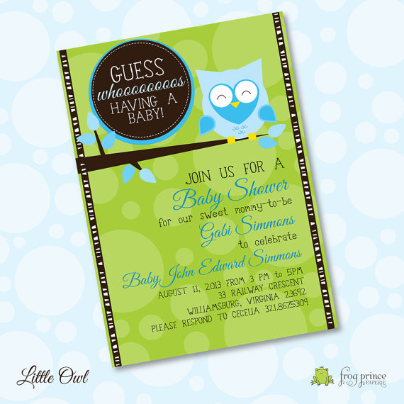 Little Owl Baby Shower - Custom DIY