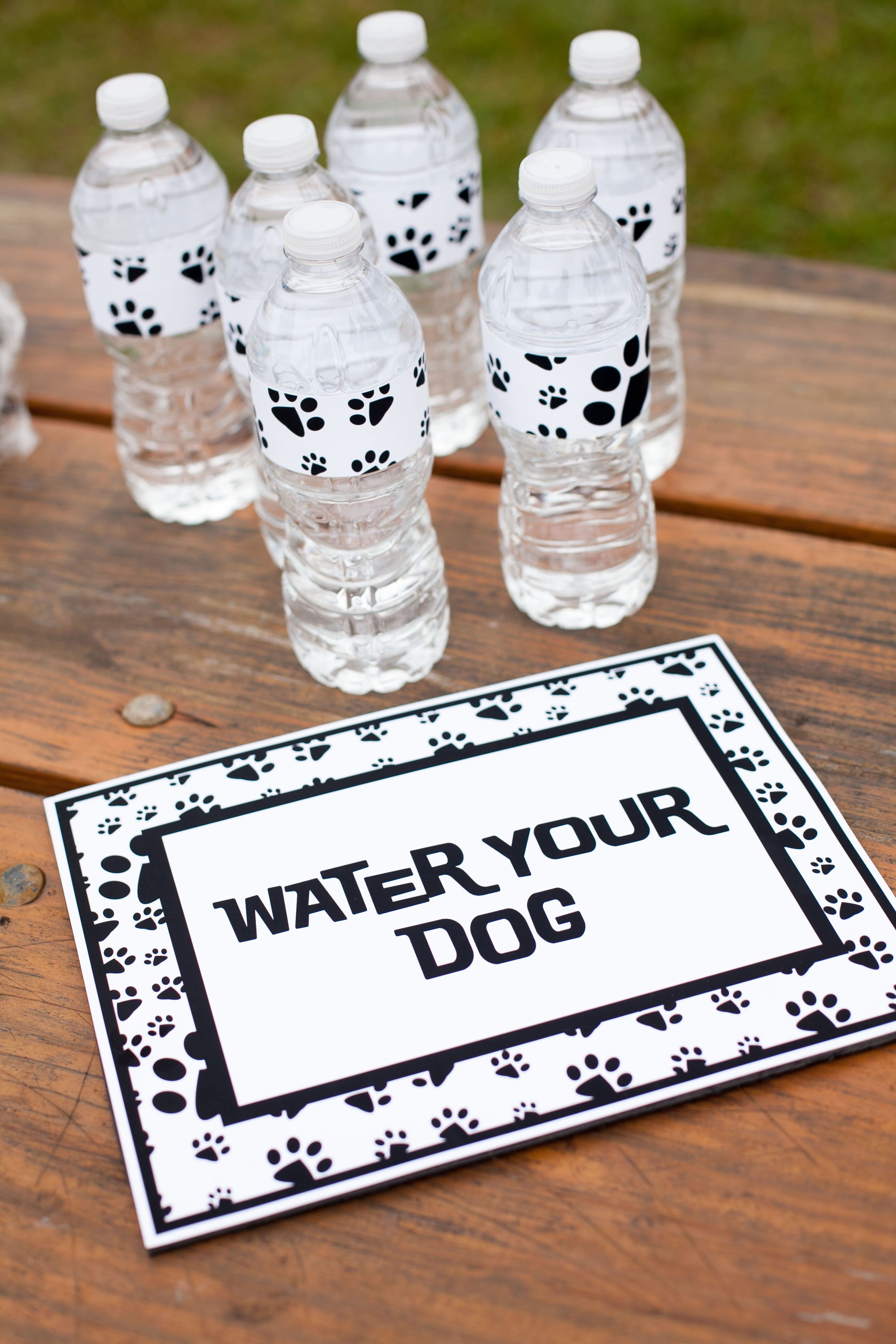 20 Easy Ideas For A Puppy Party On A Budget Page 3 Of 6