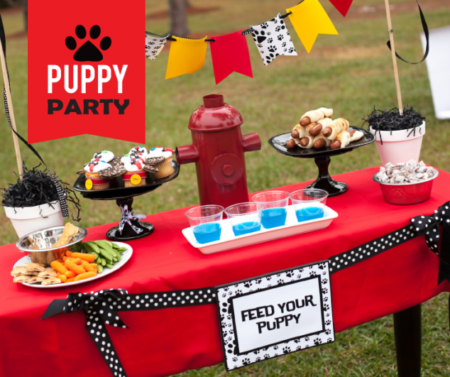 puppy-party-18