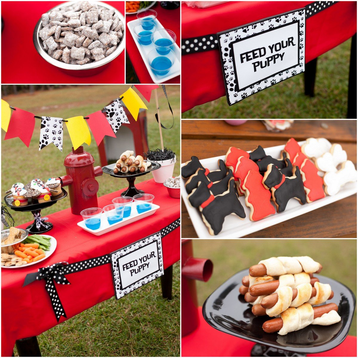 20 Easy Ideas For A Puppy Party On Budget