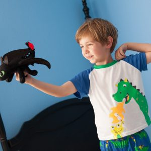 Conquering Fears with Toothless the Dragon