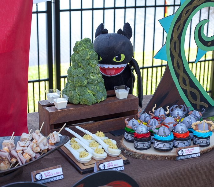 how to train your dragon party-30