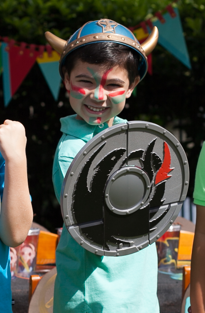 how to train your dragon party birthday boy