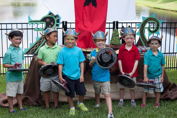 how to train your dragon party vikings with boat