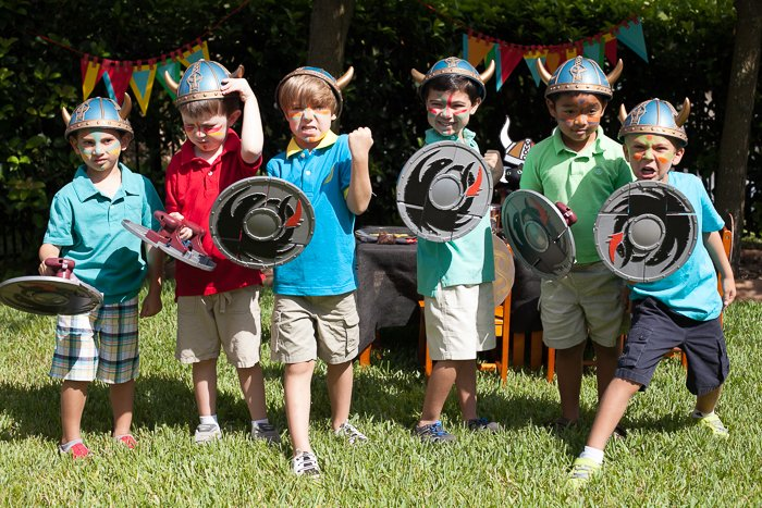 how to train your dragon party vikings