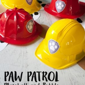 Paw Patrol Party Hat