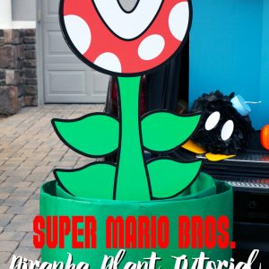 Mario Brothers Piranha Plant DIY and Question Mark Box Tutorial