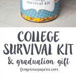 College Survival Kit DIY Graduation Gift