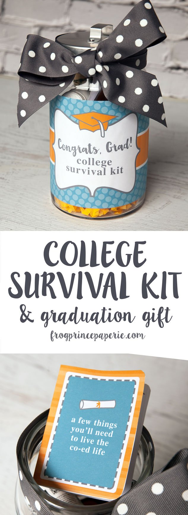 College Survival Kit Diy Graduation Gift Frog Prince Paperie