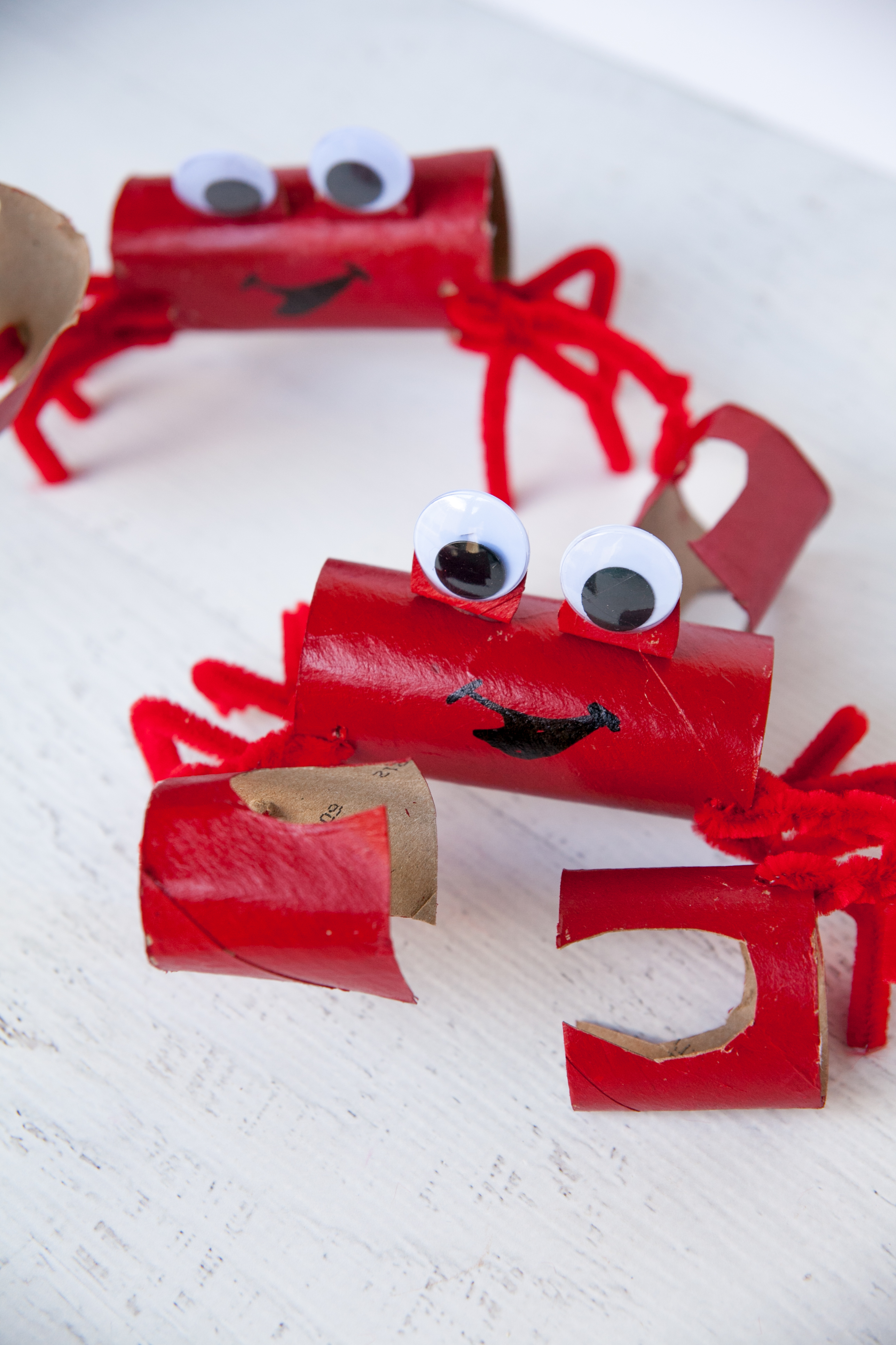 Crabby Scout Craft Project - Frog Prince Paperie