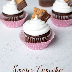 Having a bake sale? These S'mores Cupcakes are big sellers. And with pretty packaging tips, they'll be the first to sell out!