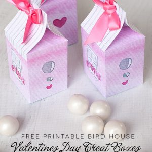 Pick up a free printable for Valentine treat boxes made like bird houses for your tweetie